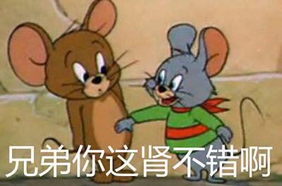搞笑图:猫和老鼠表情表情包v表情动态手机软件图片