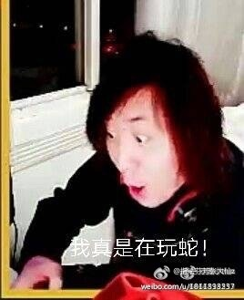 张大仙表情包:我真是在玩蛇图片